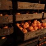 20131203-orange-0149