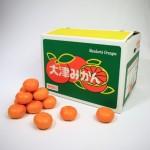 20131214-orange-0520