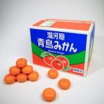 20131214-orange-0525